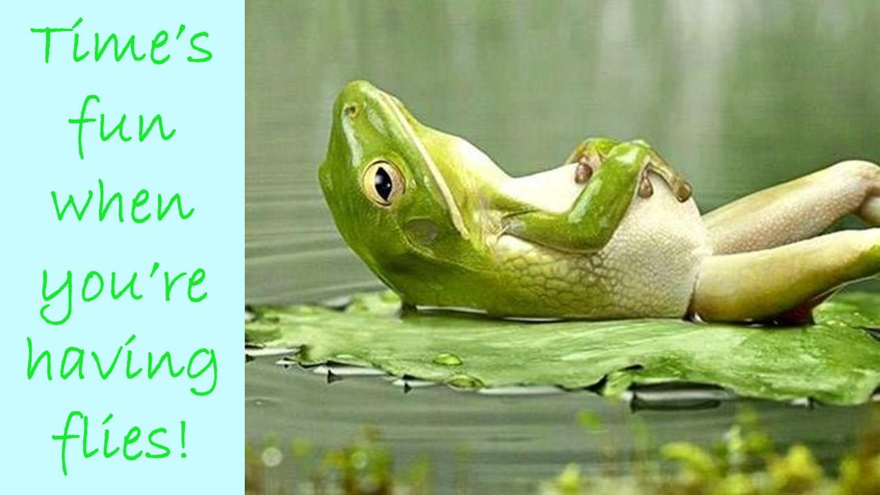 blog_image:beschi_14683279645784e81c0f685.jpg:end_blog_image